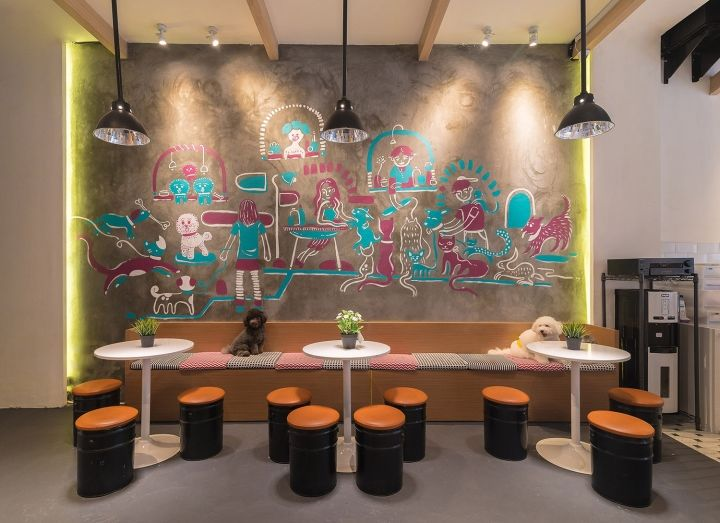 Dog Grooming Salon Design Ideas Architecture Home Design