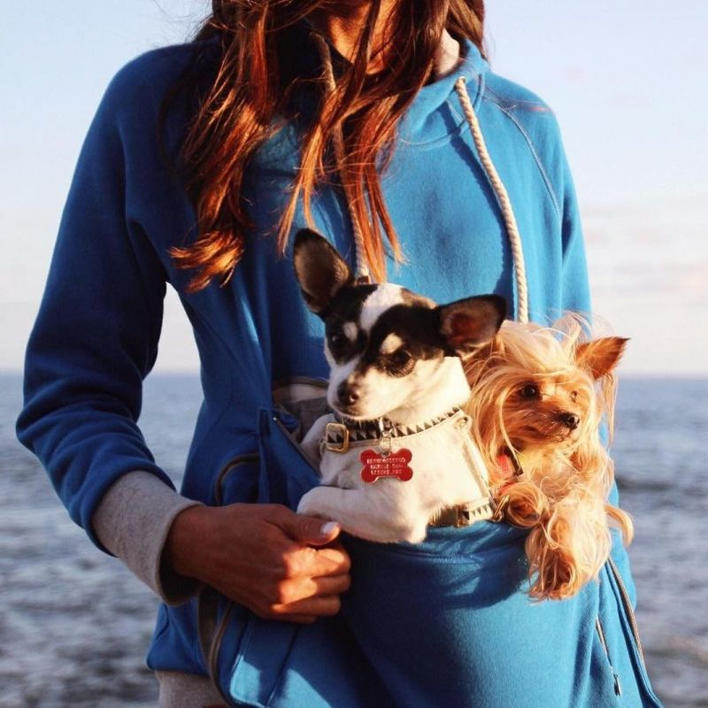 Pet Pouch Sweatshirts