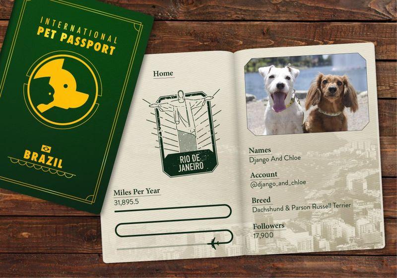 Travel-Friendly Pet Passports