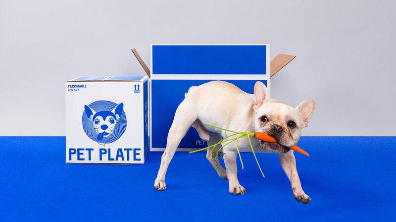 Human-Inspired Pet Cuisine