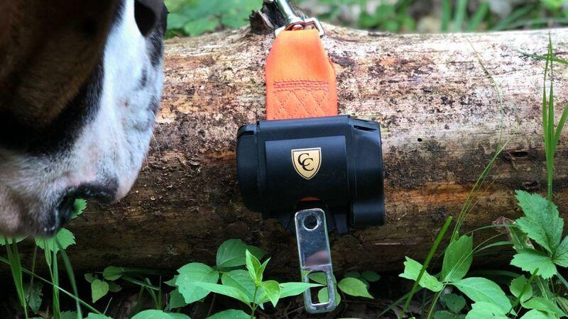 Automotive Pet Securement Accessories