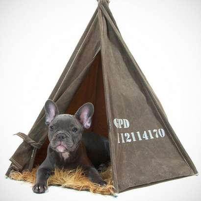 Canine C&er Beds & Canine Camper Beds : pet tent