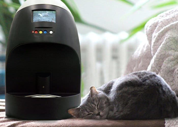 Connected Automatic Pet Feeders