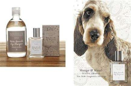 The Smell of Rich Dogs