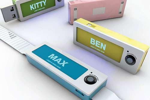 Pet-Stalking Cameras