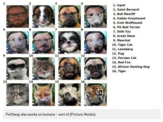 Pet Face-Swapping Apps