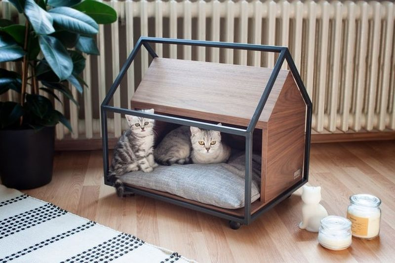 Abstract Architectural Pet Beds