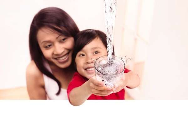 Multifunctional Water Purifiers
