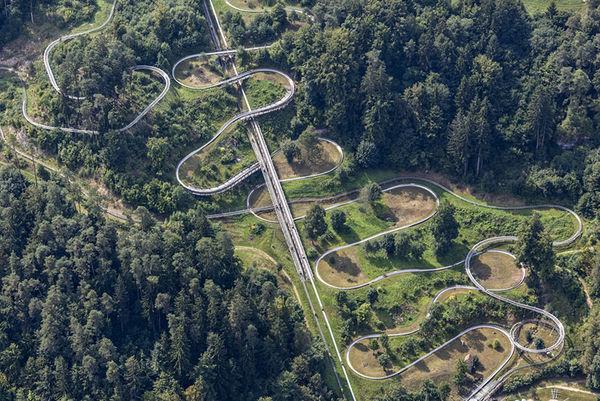 Aerial Evolutionary Landscapes