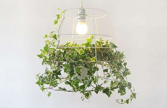 Plant Pendant Lighting