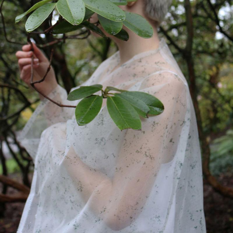 Photosynthetic Clothing