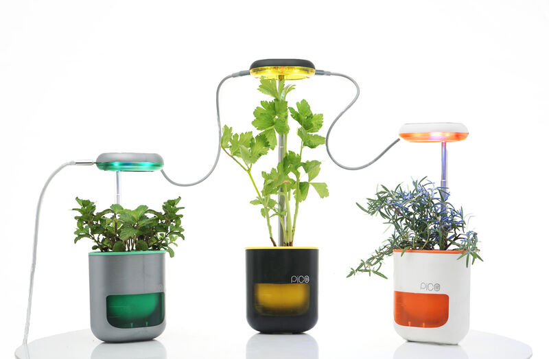Affordable Self-Watering Planters