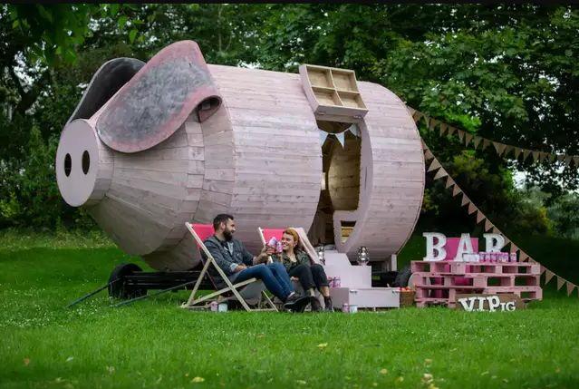 Portable Pig-Themed Rentals