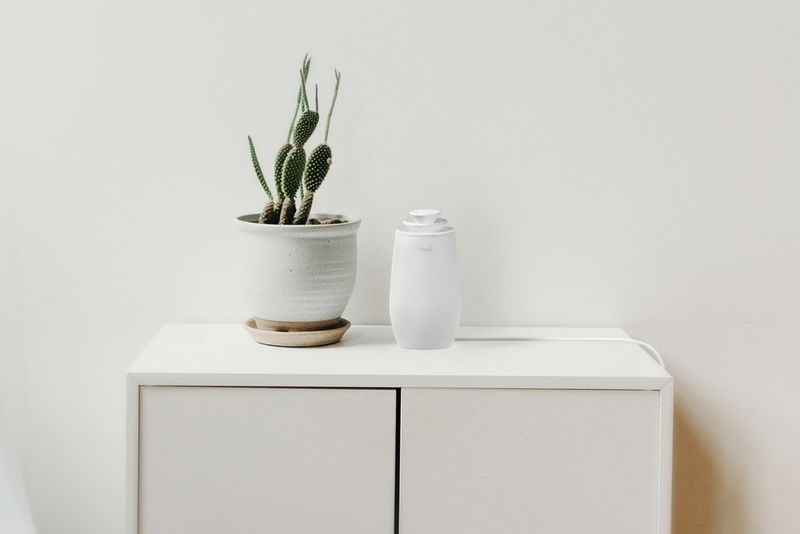 Naturalistic Home Humidifiers