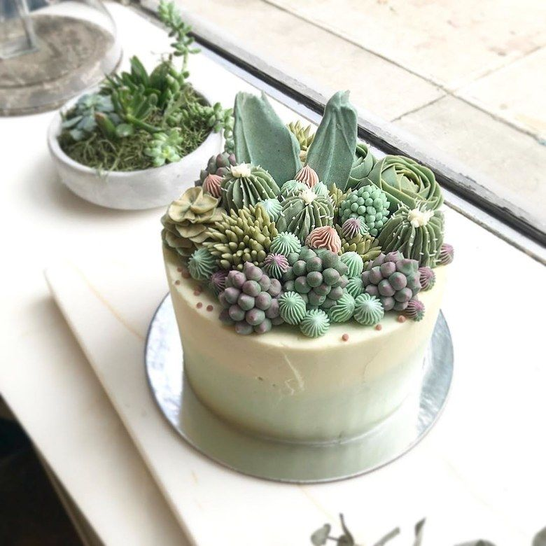 Realistic Succulent Plant Cakes