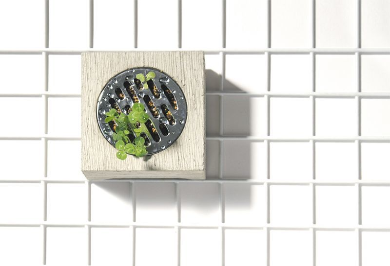 Concrete Shower Drain Planters