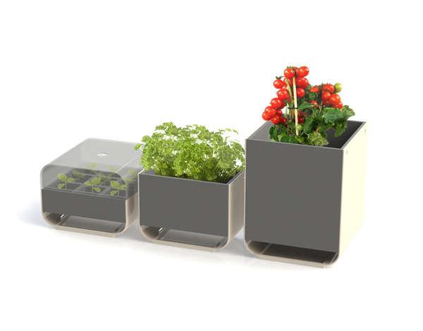 Compartmentalized Countertop Gardens