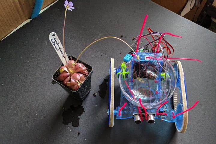 Autonomous Sun-Seeking Plant Bots