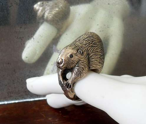 Odd Animal Accessories