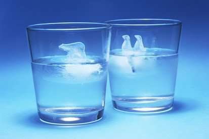 Antarctic Animal Ice Cubes