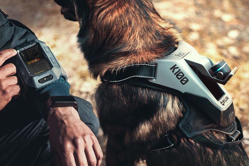 POV Police Dog Cameras