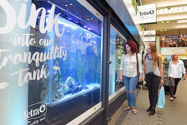 Pop-Up Aquarium Exhibits