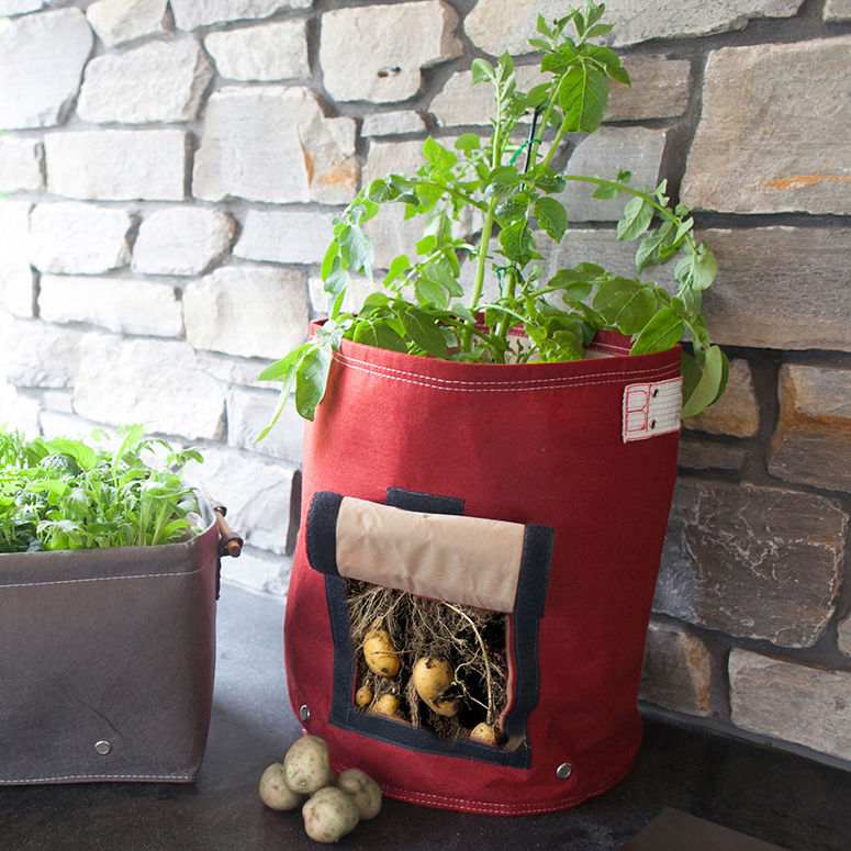 Vegetable Bag Planters