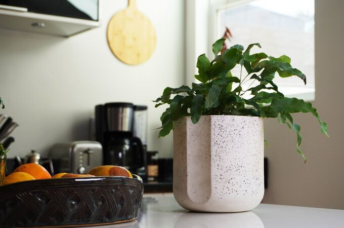 Upcycled Porcelain Planters