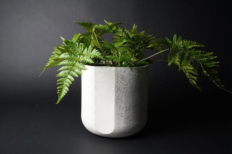 Carbon-Capturing Plant Pots