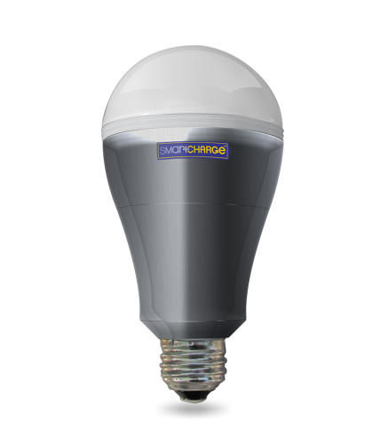 Power Outage Lightbulbs