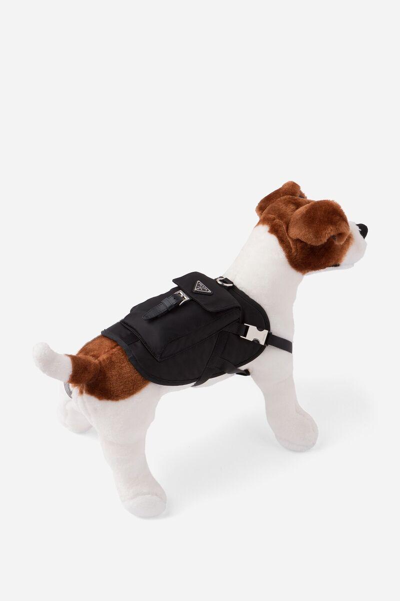 Edgy Designer Dog Jackets