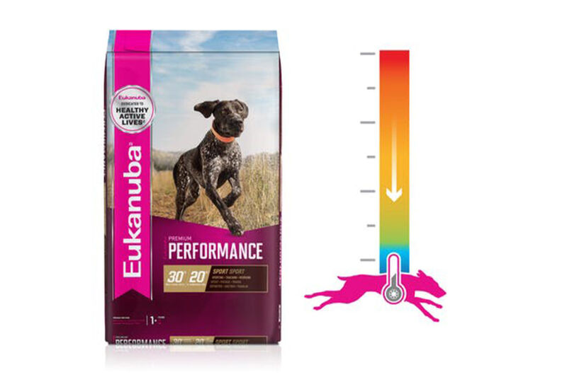 Temperature Regulation Dog Foods