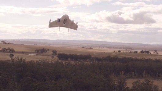 Autonomous Delivery Drones
