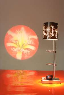 Projector Table Lamps