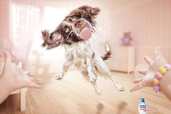 Slobbering Pet Hygiene Ads