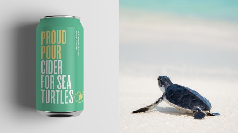 Turtle-Saving Ciders