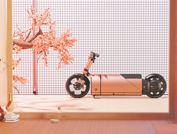 Demure Dual-Battery Mopeds