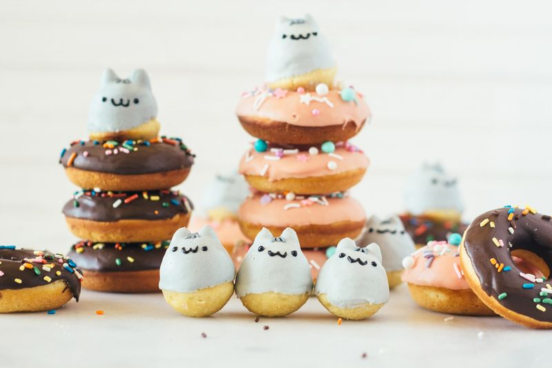 Cartoon Cat Donuts
