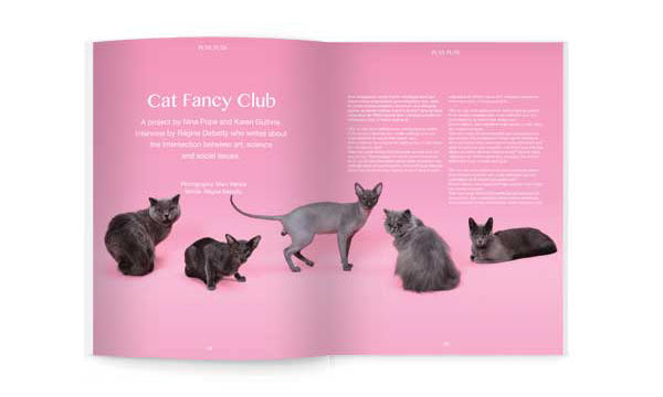 Cat-Themed Magazines