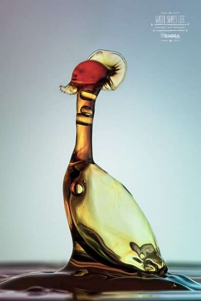 Bird-Shaped Water Drop Ads