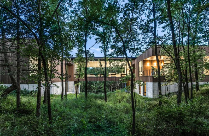 Contemporary Nature-Inspired Homes