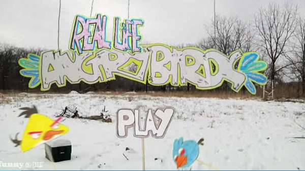 Real-Life Angry Birds