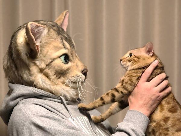 Customizable Cat Masks