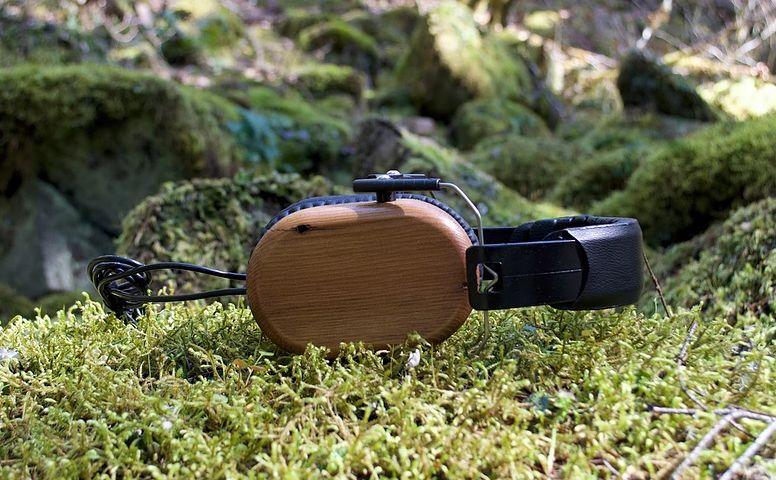 Reclaimed Wood Heaphones