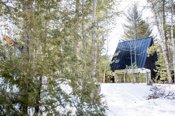 Cozy Tree House Lofts