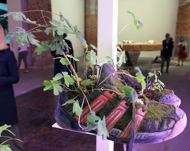 Sneaker Plant Pots