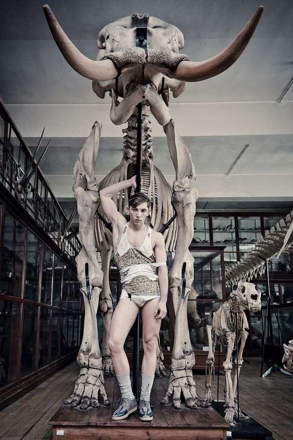 Designer Dinosaur Lookbooks