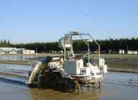 Rice Planting Robot