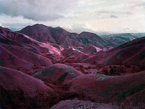 Infrared Field Photography