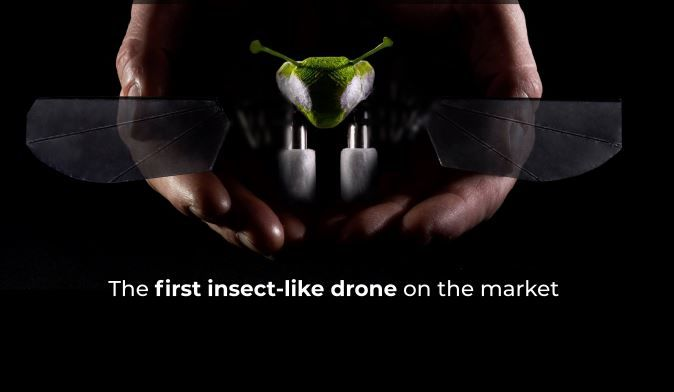 Naturalistic Insect-Inspired Drones